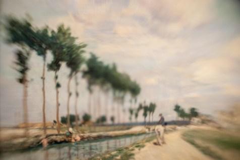 Borrowed Source: Tree Detail, Johan Barthold Jongkind, (Dutch, 1819-1891), The Towpath, 1864, National Gallery of Art.