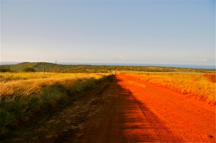 follow_the_road_to_Molokai