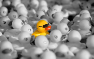 You Have to Be Different to Stand Out In The Crowd