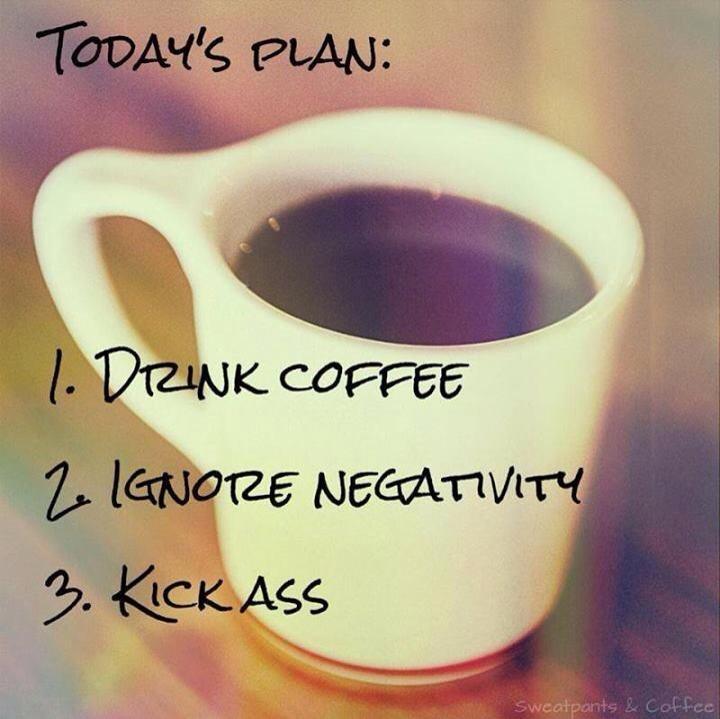 todys plan