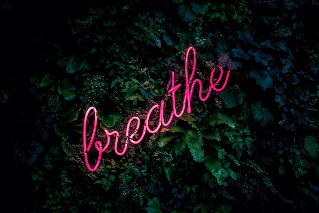 pink neon light spelling out 'Breathe' hung against dark green leaves