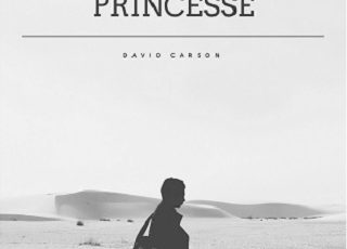 David Carson Princesse
