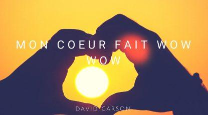 David Carson - Mon coeur fait wow wow