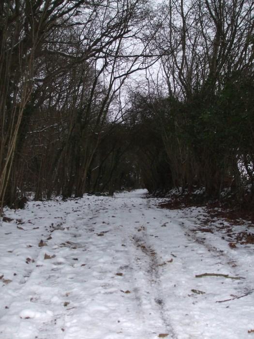 Walking Home for Christmas 051