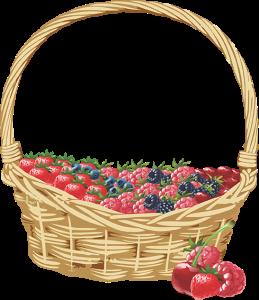Cesta de Frutas Vermelhas
