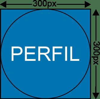 Linkedin Perfil 300x300