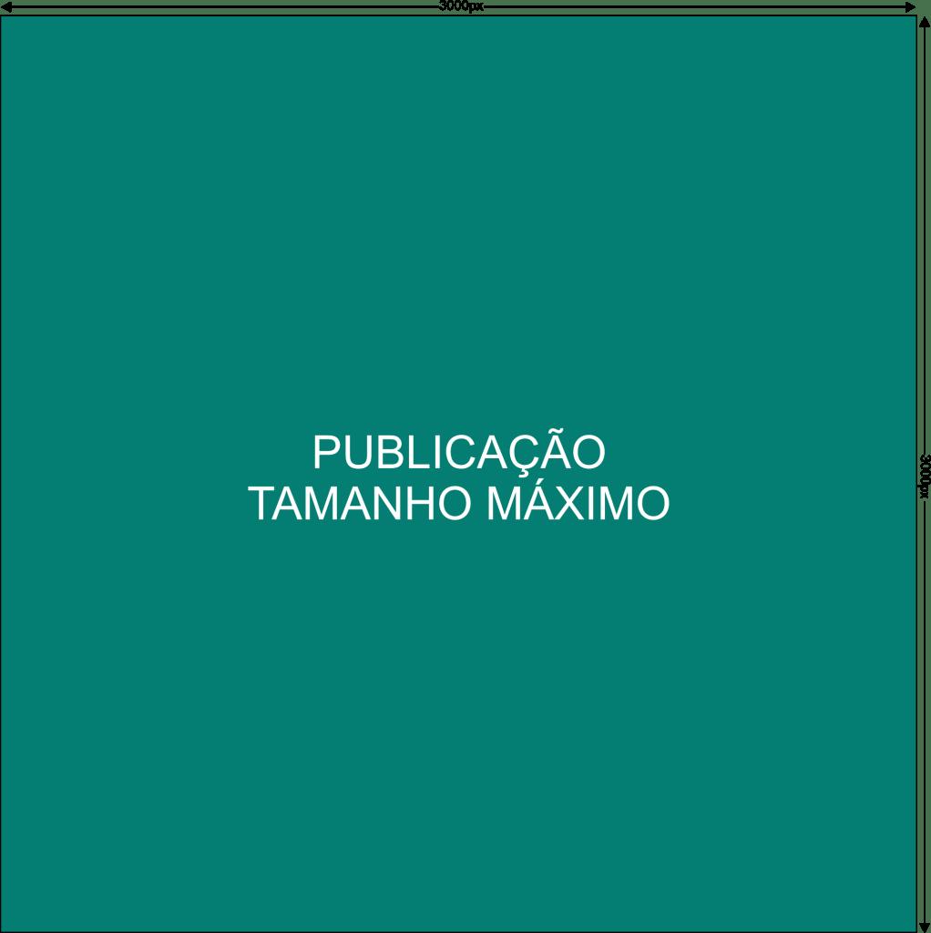 Google Business Publicação Máxima 3000x3000