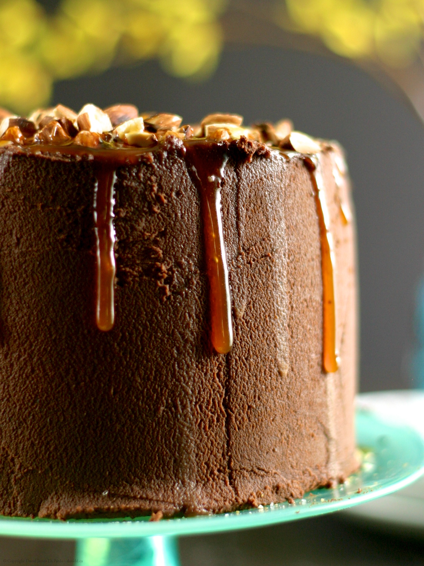 Gluten-Free Salted Almond Chocolate Cake