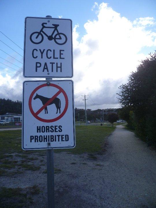 Mais si tu veux venir en taureau tu peux...