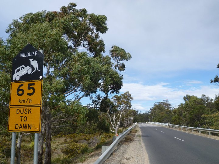 Direction Freycinet NP