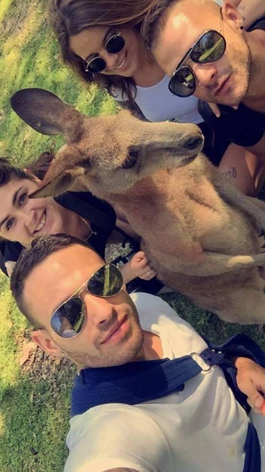 gwen kangourou