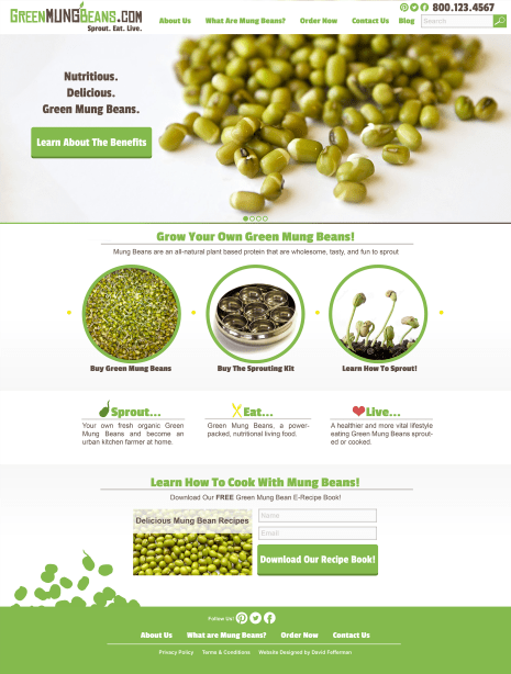 Website V1 - Green Mung Bean