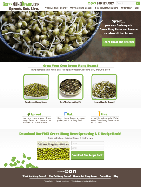 Website V3 Sprout - Green Mung Bean