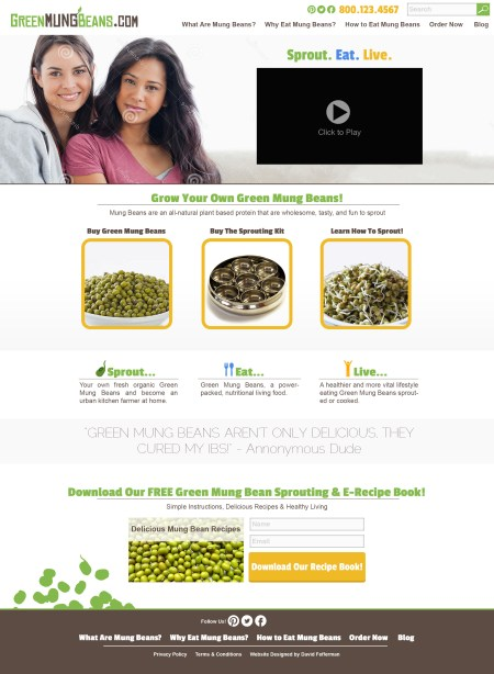 Website V4 - Green Mung Bean