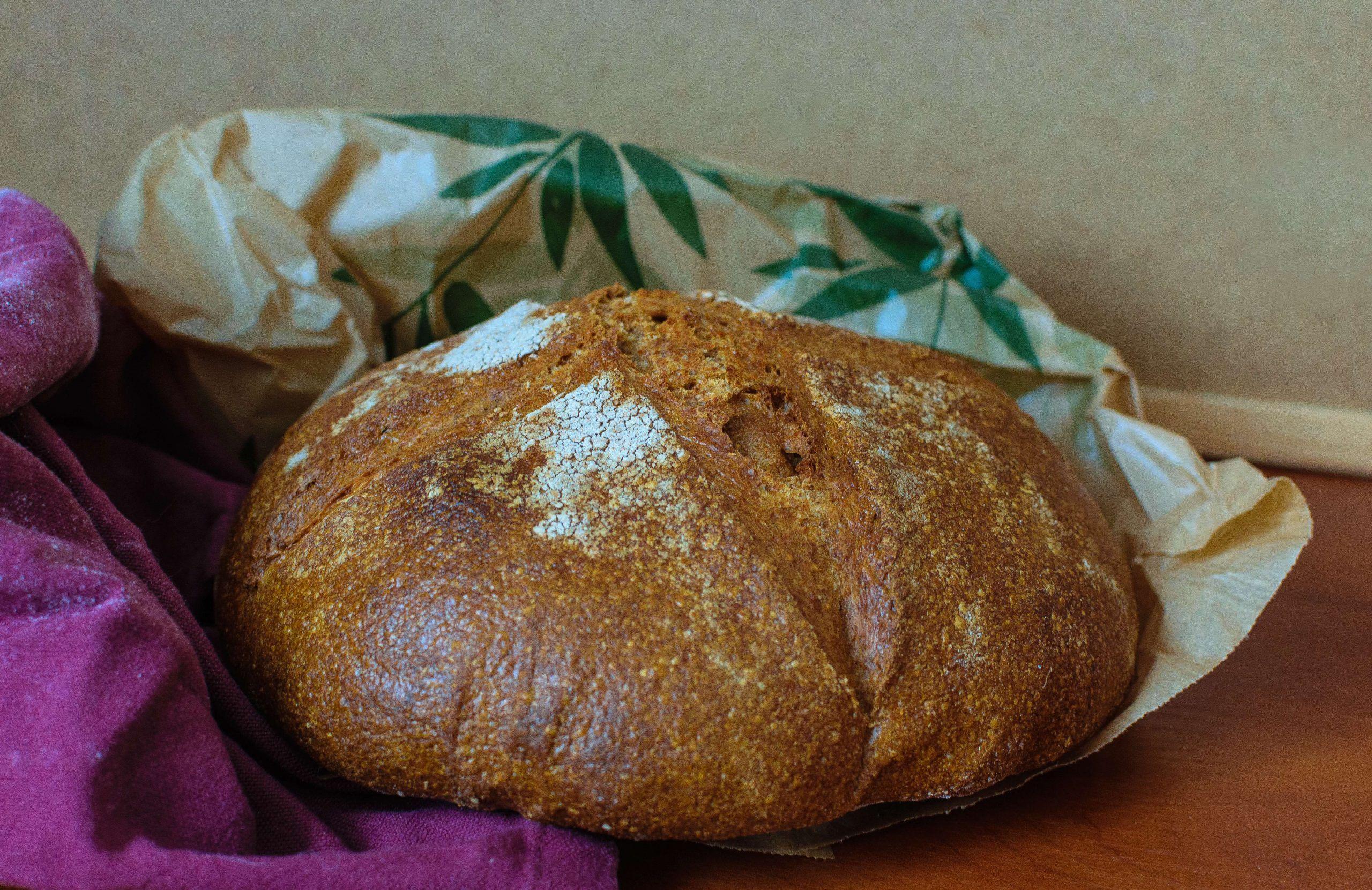 Pan Básico, Mi Primer Pan Integral de Masa Madre