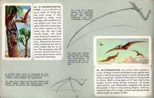 Rhamphorhynchus and Pteranodon
