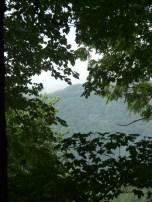 canopy-break