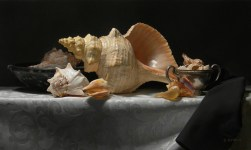 Douglas Flynt, Conches 12x20