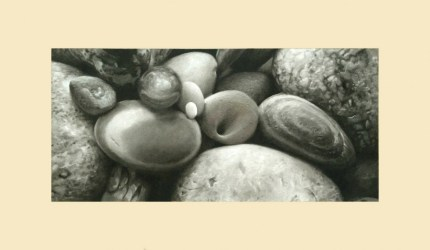 """Origins, 12""""x20"""", Charcoal on Paper, $925, Sold"""
