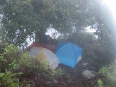 Camp on Mt. Temetiu-Feani, Hiva Oa, Marquesas Islands, 2007