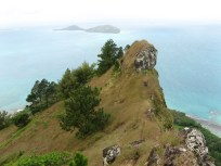 Auorotini (Mt. Duff), Mangareva, Gambier Islands, 2008