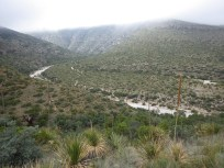 McKittrick Canyon, Guadalupe Mountains National Park, Texas