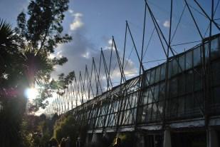 Dusk, Botanical Gardens, Edinburgh
