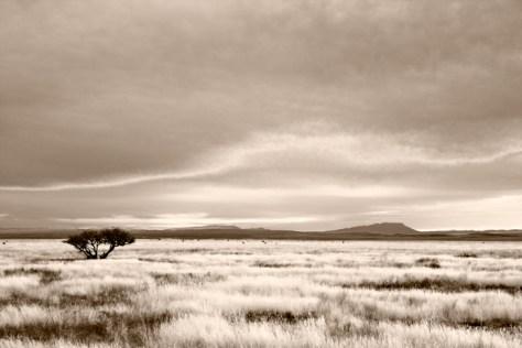 Evening Sky, Fort Davis