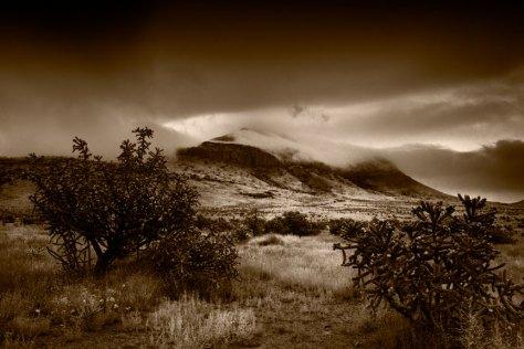 Morning Fog on Blue Mountain