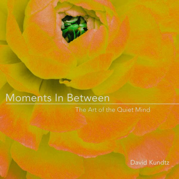 Moments In Between Orange
