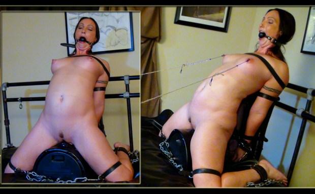 Sybian Bondage Orgasms