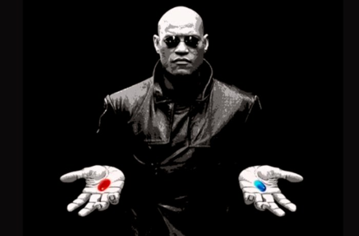 https://i1.wp.com/davidmmasters.com/wp-content/uploads/2017/04/red-pill-of-awareness-or-blue-pill-of-unconsciousness.jpg?w=700