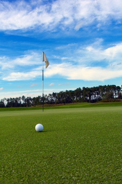 Golf ball by the flag