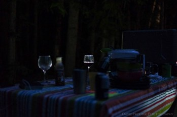A glass of wine is illuminated during a picnic dinner while camping.