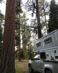 Ren at Ochoco Divide Campground