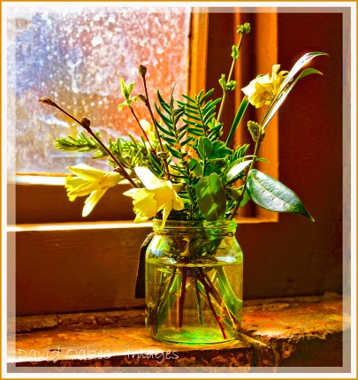 Spring-on-the-Window-sill