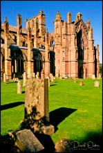 South-Front-and-Aisle-Chapels,-Melrose-Abbey