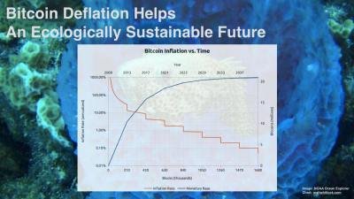 Bitcoin Deflation Helps An Ecologically Sustainable Future