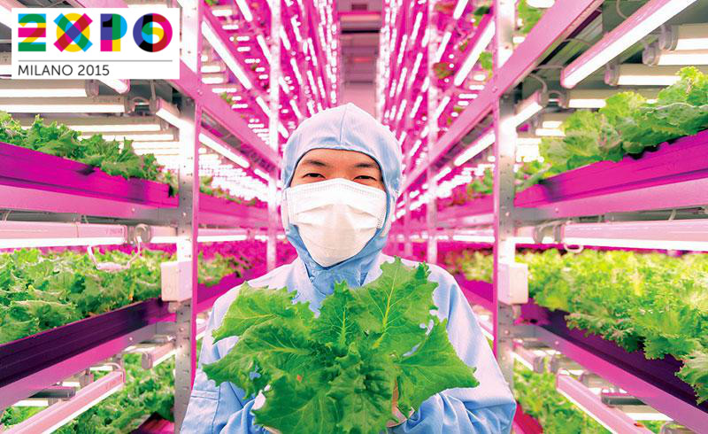 Exploding food productivity through plant labs