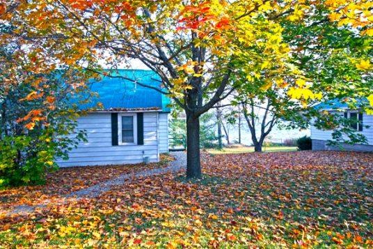 Fall building