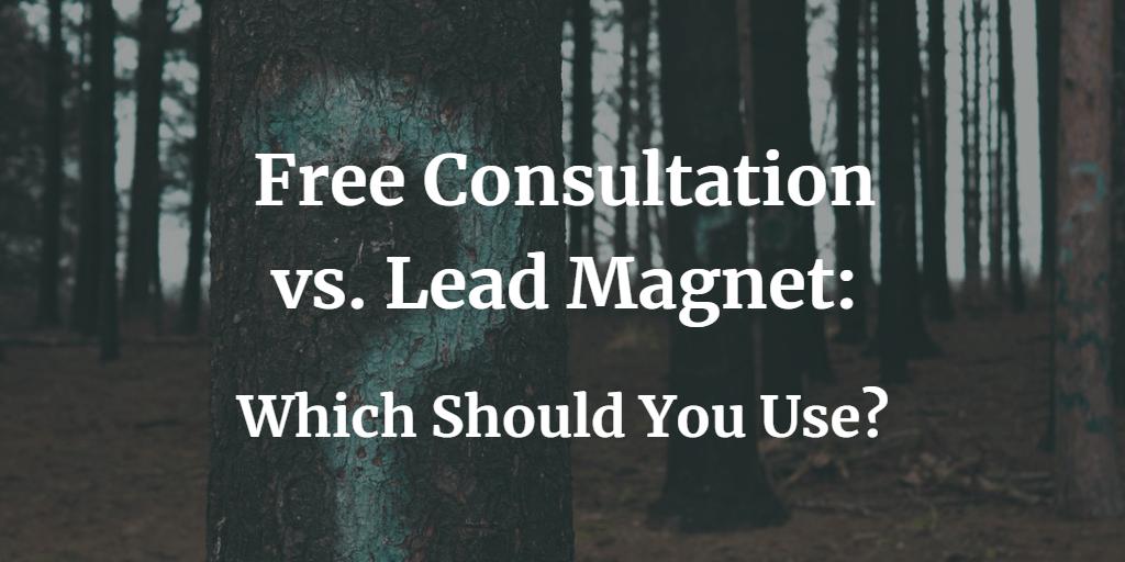Free Consultation vs Lead Magnet - Blog Image