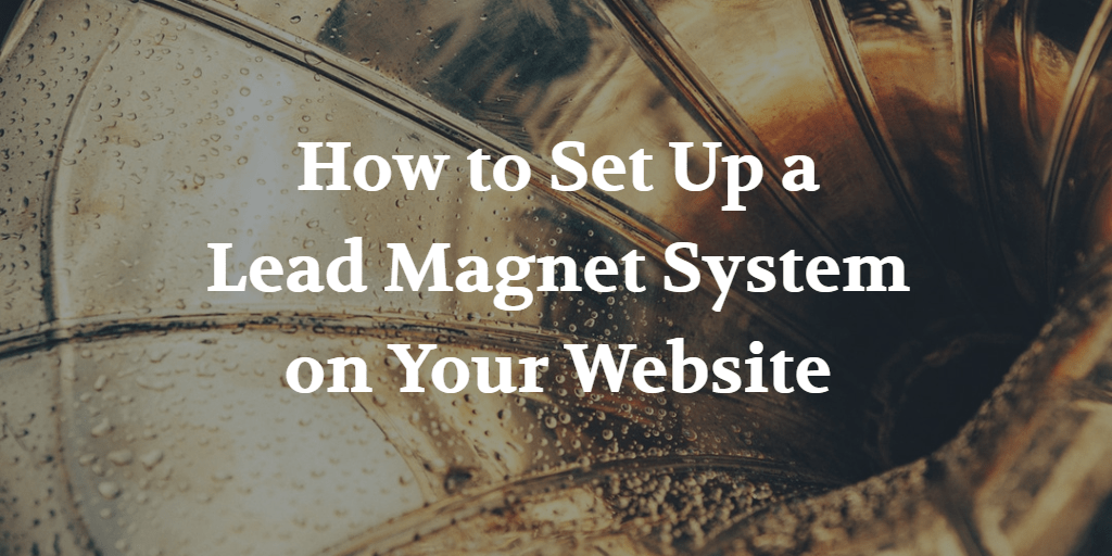 How to Set Up a Lead Magnet System on Your Website - Blog Image