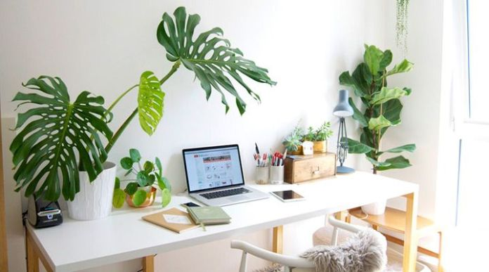 Natural Desk Design