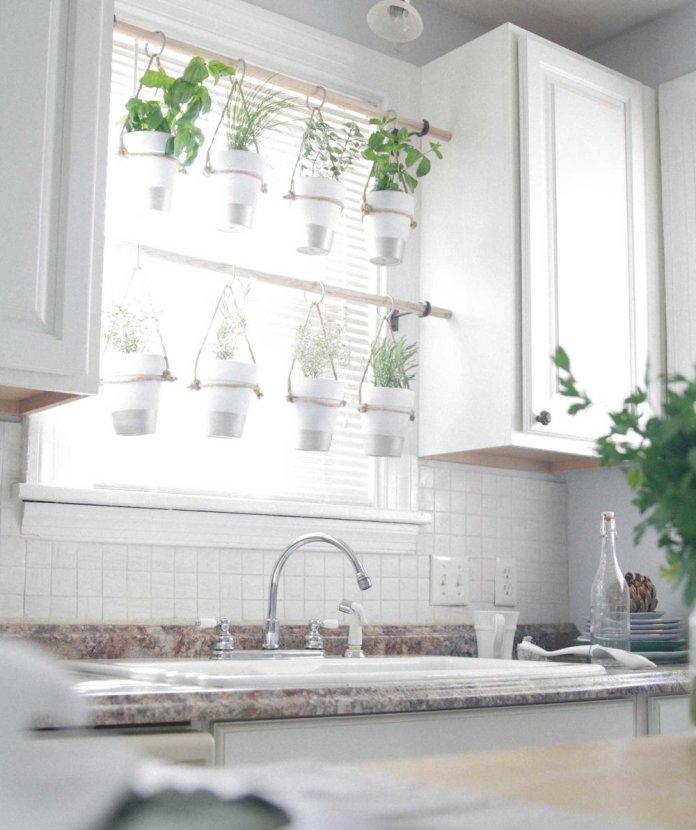 Kitchen Window Sill Mini Garden