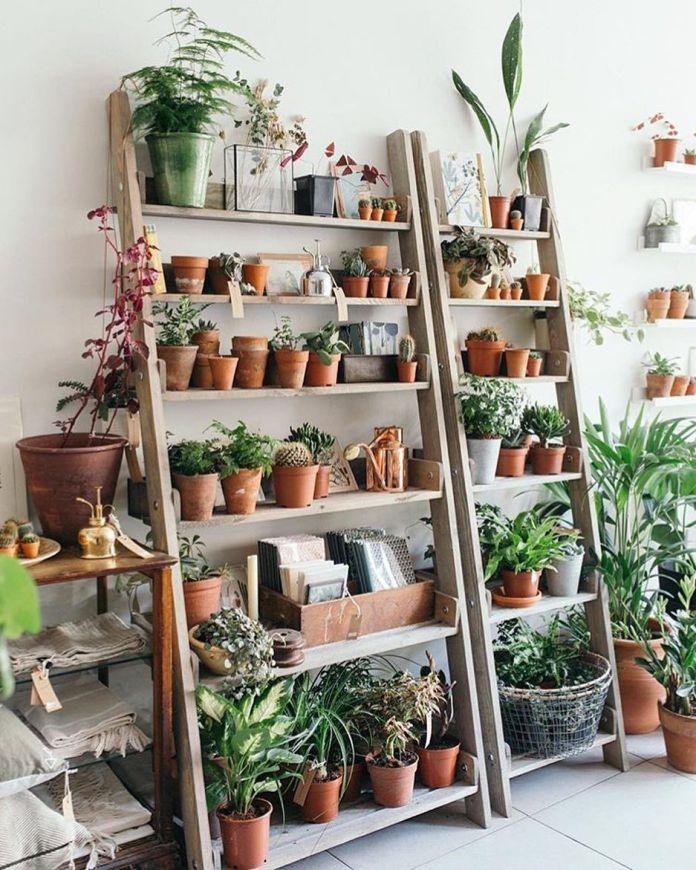 Mini Garden with Unique Shelves
