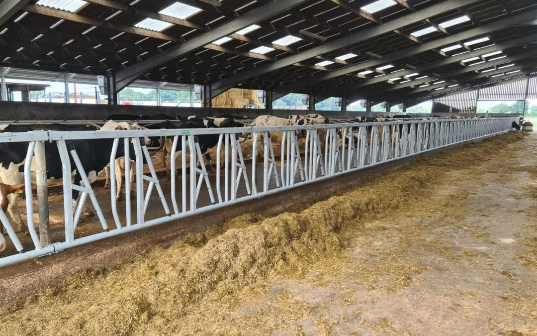 Supplied & Fitted: Spinder Safety Self Locking Feed Yokes