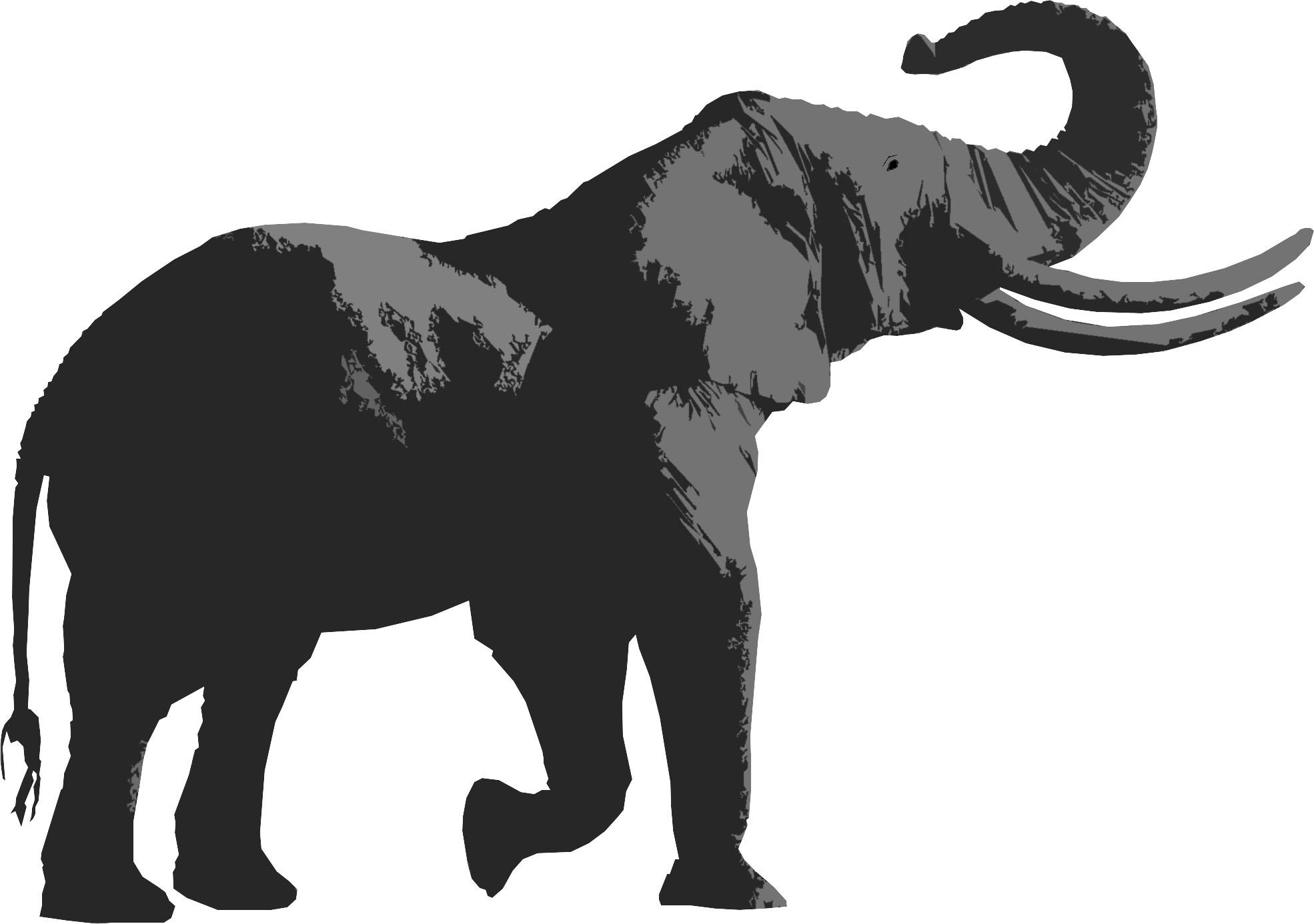 Elephant Cutout David Rothwell
