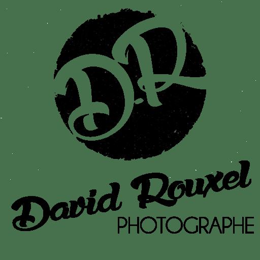 david rouxel