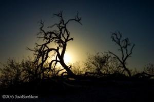 death-valley-sunrise