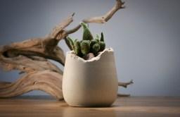 Esta es de las actuales. De tacto extremadamente fino y con un acabado 'roto' en el borde muy bonito. Los cactus han encontrado un hogar perfecto para vivir. 112x112x119mm.